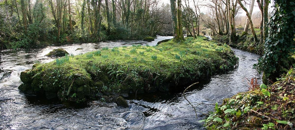 Island garden on the Lough Kip river