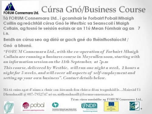 Start Your Own Business course in Moycullen