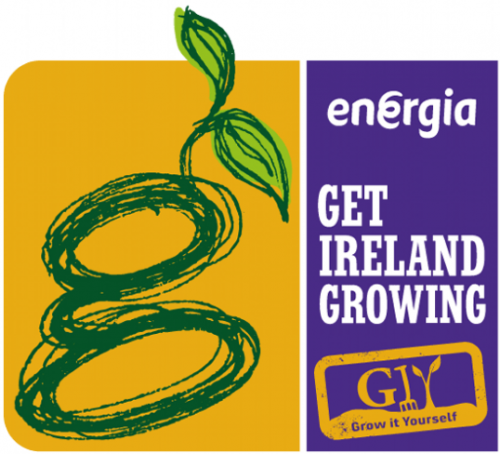 Energia Get Ireland Growing Supporting Community Growing Projects across Ireland