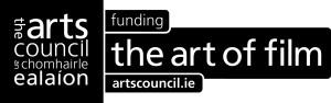 Irish Arts Council
