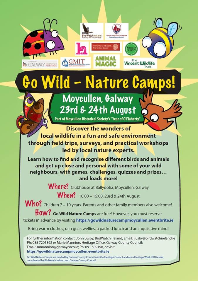 Go Wild Nature Camp
