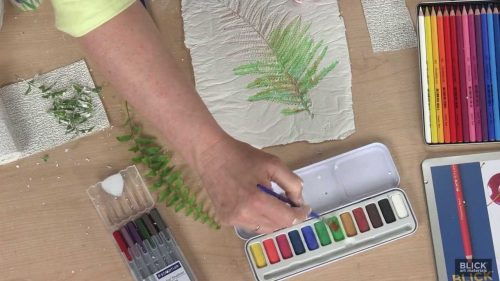 botanical art classes moycullen