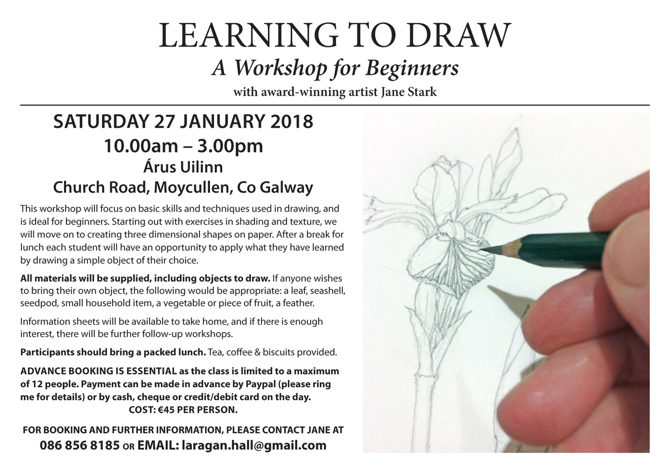 Learn to draw at Áras Uilinn, Moycullen