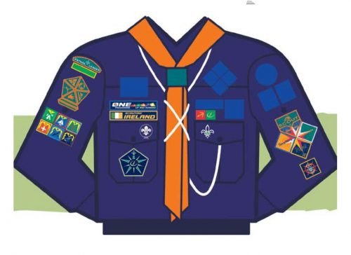 Moycullen Scouts