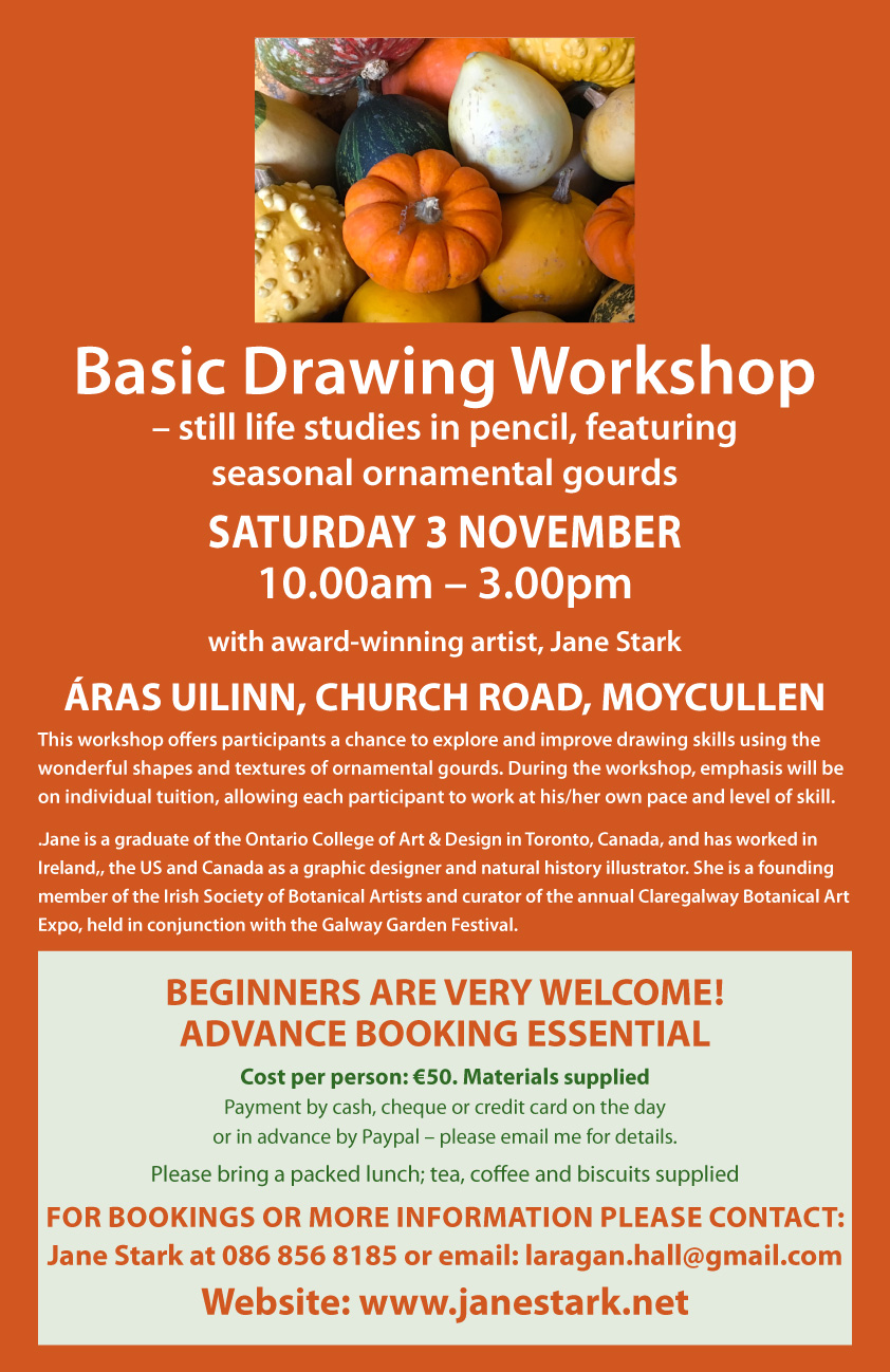 Basic Drawing Workshop with Jane Stark
